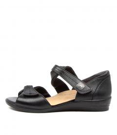 Doxie W Black Leather