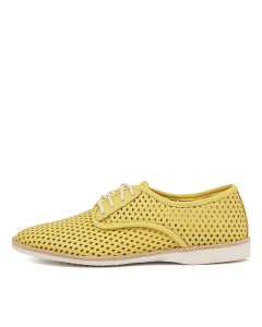 DERBY PUNCH YELLOW NUBUCK